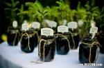 环保婚礼装饰品 低碳环保婚礼现场